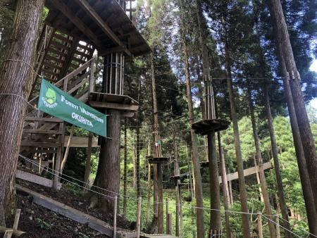 森の中にあるにあるフォレストアドベンチャー施設の写真