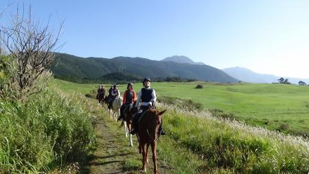 緑が美しい飯田高原で乗馬体験している写真